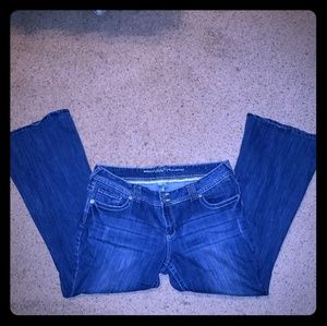 Blue Jeans Flare cut